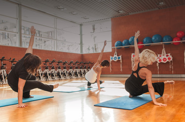 http://www.centresportifdelapetitebourgogne.ca/iw-courses/yogalates/
